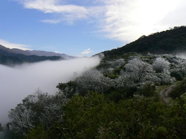 qué ver en Salta Reserva%20Salta